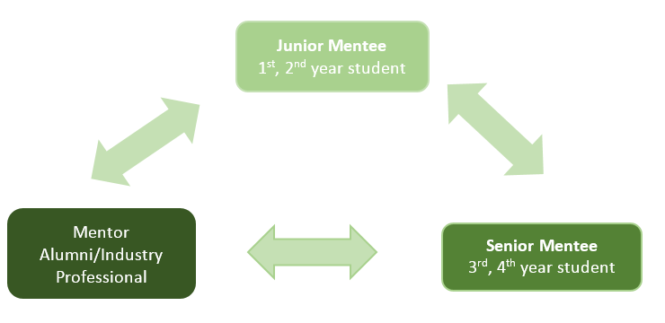 Diagram indicating how the Tri-Mentoring Program works