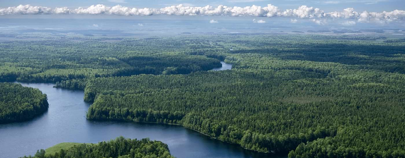 Aerial view of a landscape featuring forests and lakes