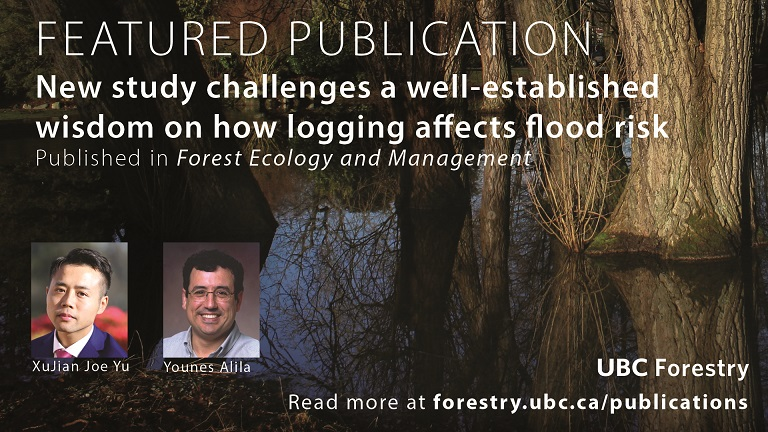 New Study Challenges a Well-established Wisdom on how Logging Affects Flood Risk