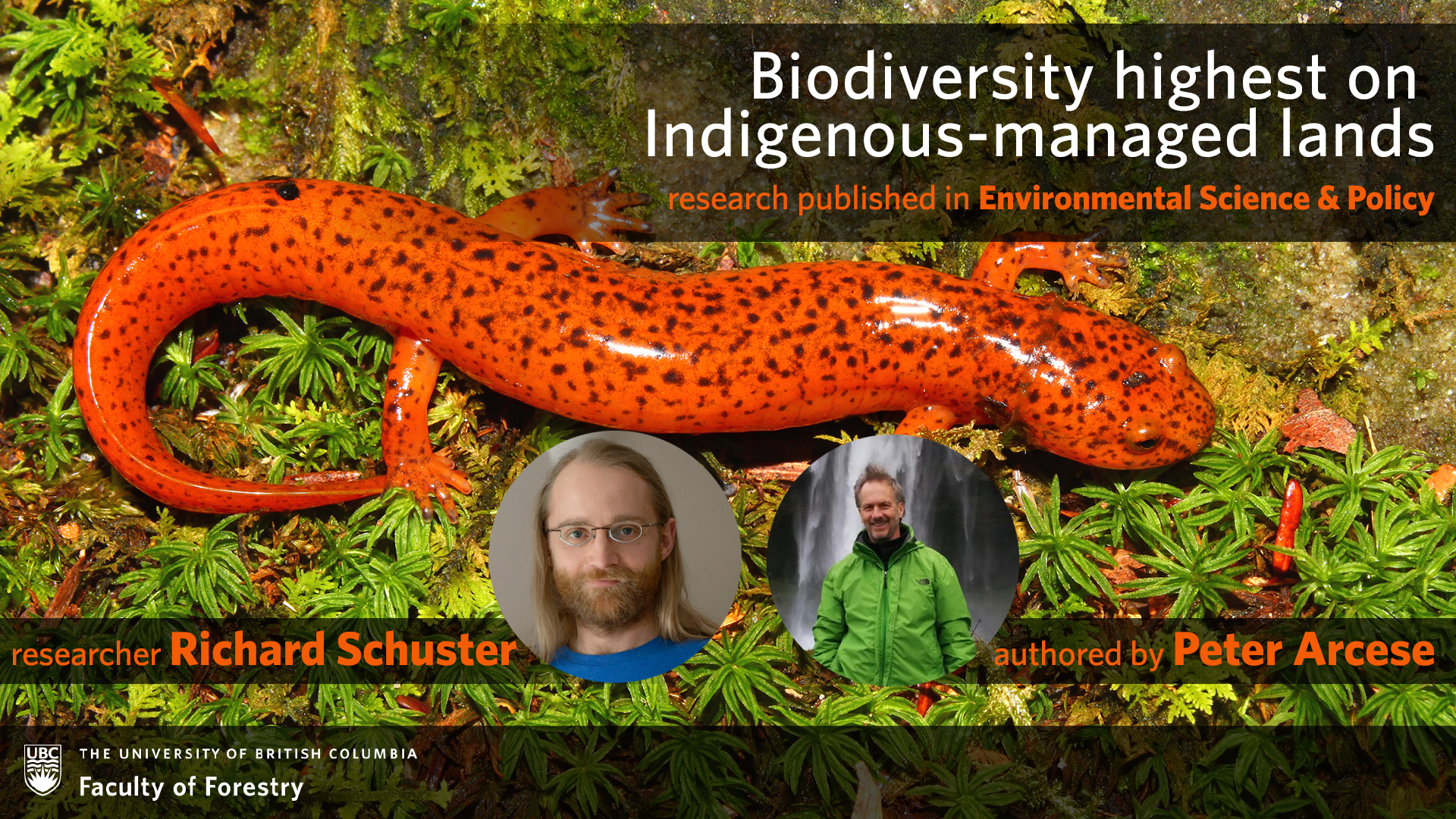 Biodiversity highest on Indigenous-managed lands