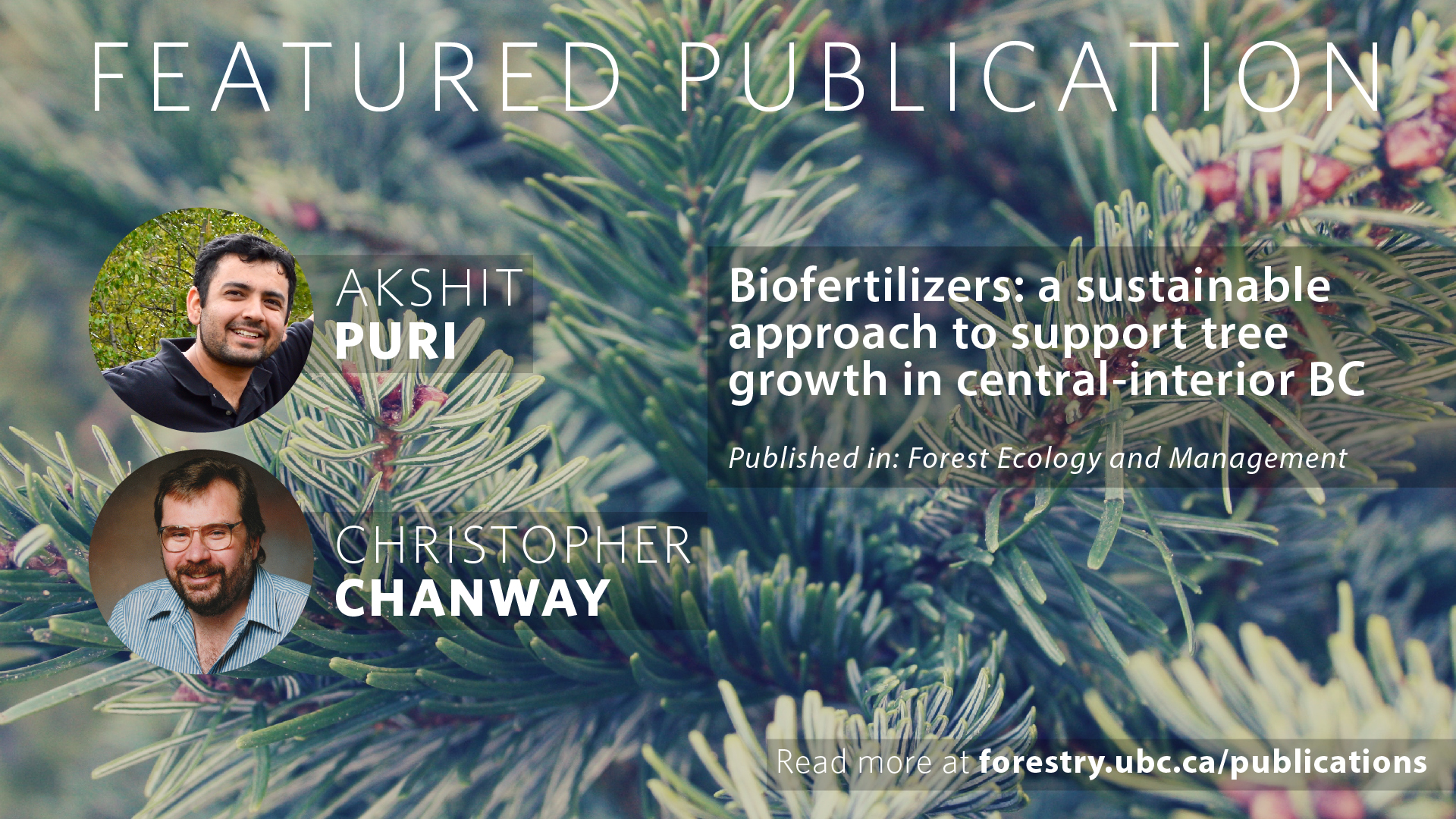 Biofertilizers: a sustainable approach to support tree growth in central-interior BC