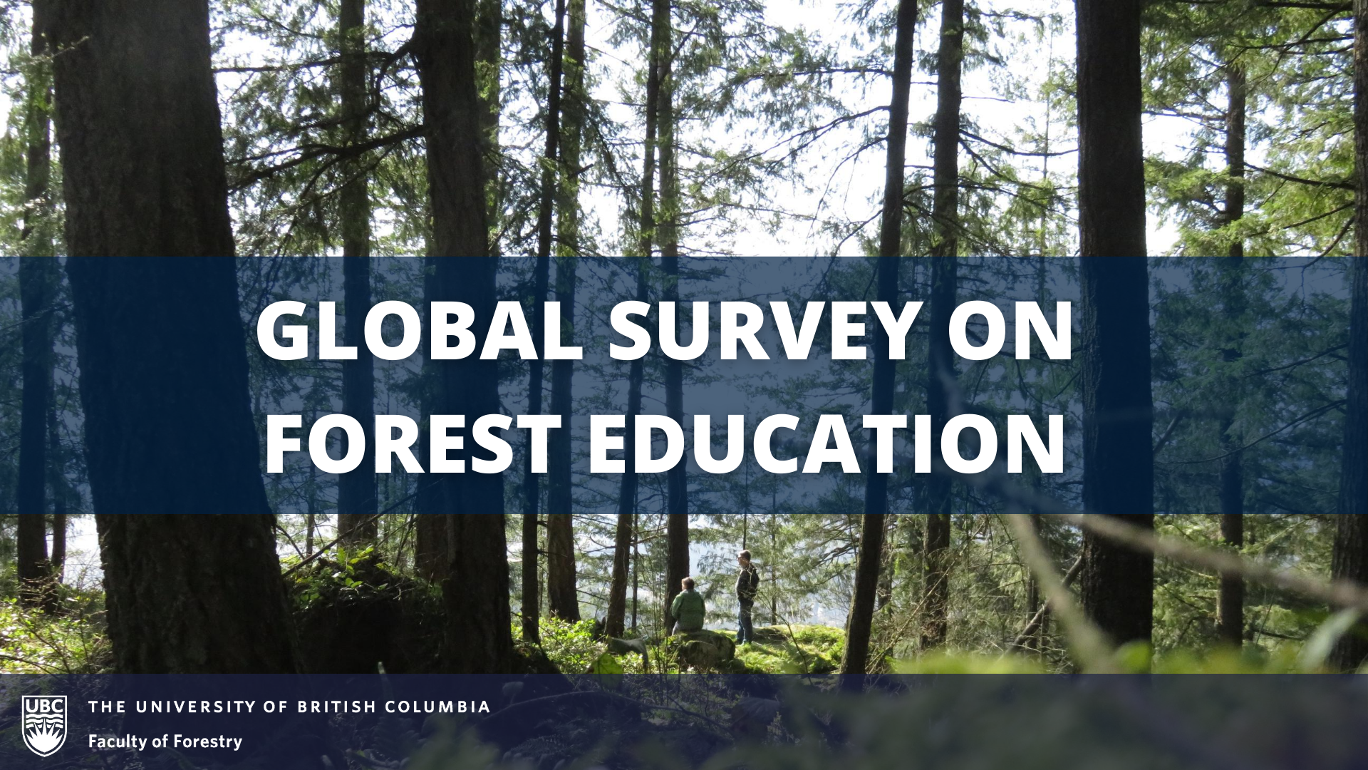 Participate in the Global Survey on Forest Education