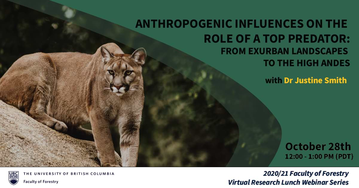 Anthropogenic Influences on the Role of a Top Predator