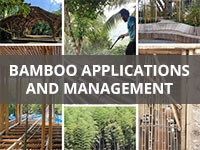 Bamboo Applications and Management