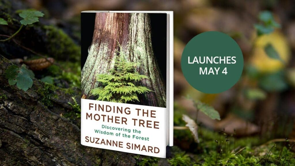 Suzanne Simard Book Launch - Finding the Mother Tree: Discovering the Wisdom of the Forest