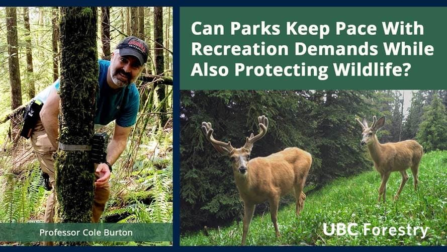 Can Parks Keep Pace with Recreation Demands while also Protecting Wildlife?