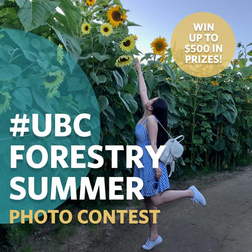 Student in a dress reaching up on one leg to take an Instagram photo of a sunflower on their smartphone.