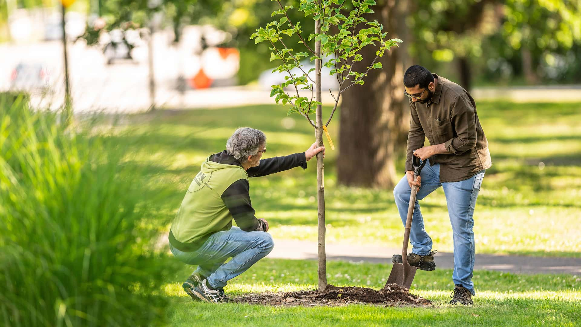 UBC Forestry's Cool 'Hood Champs Program – An Answer to Climate Anxiety?