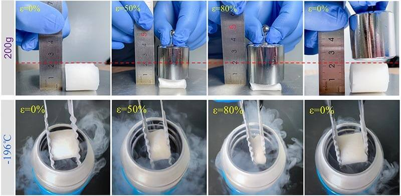 A flexible and recoverable cellulose aerogel that can exist at extremely cold temperatures of -196 °C for clothing applications